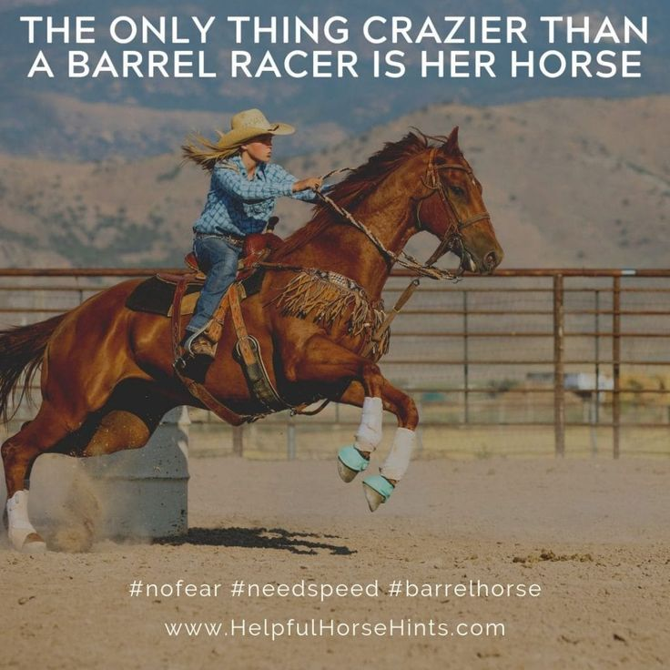 17 ShareWorthy Barrel Racing Quotes in 2020 (With images
