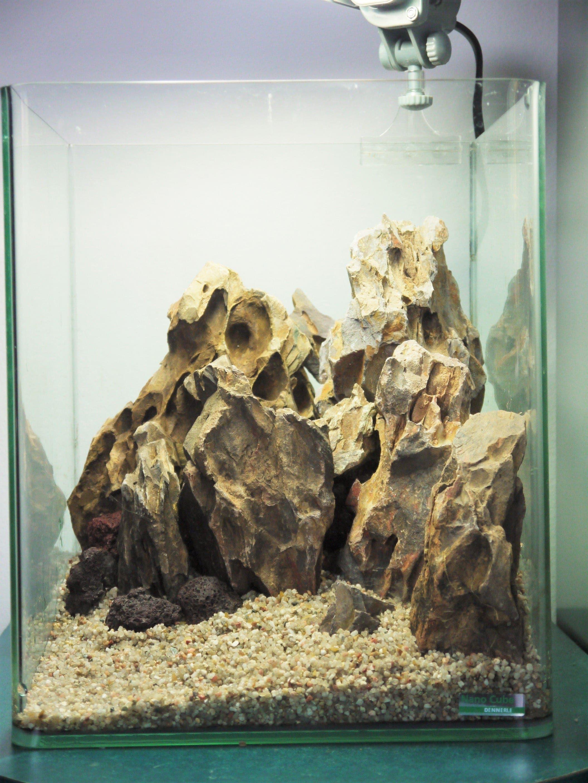 mountainscape nano 20l dennerle aquascape aquarium fish tank