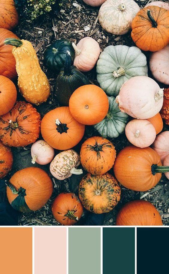 Paletas de colores de otoño para usar en tus proyectos