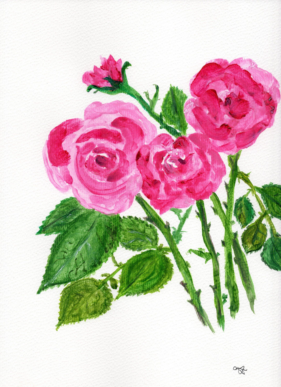 Fiori Watercolor.Original Watercolor Painting With Pink Roses Pittura Ad