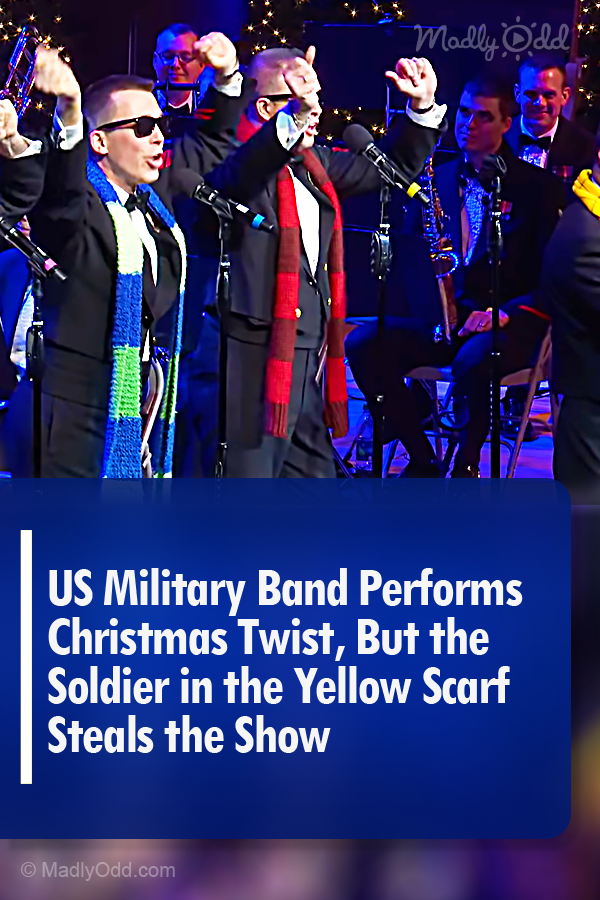 Navy Band Christmas Concert 2020 US Navy Band Performs White Christmas, But the Sailor in the