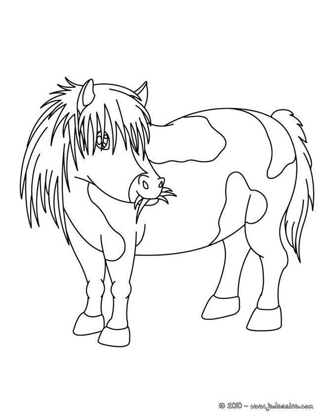 Coloriage Poney à colorier - Dessin à imprimer (met ...