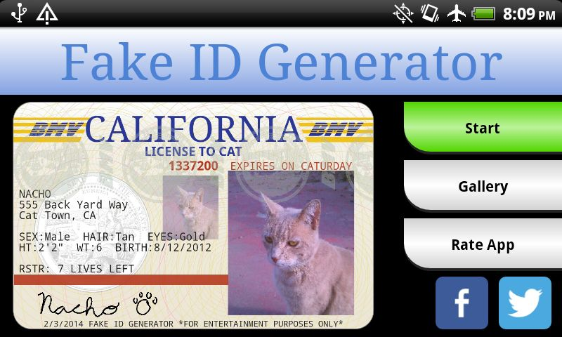 fake driving licence template - being sneaky kitten content inside off topic discussion