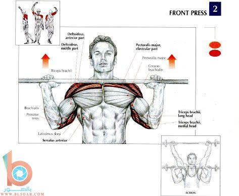 تمارين عضلات الظهر والكتفين
