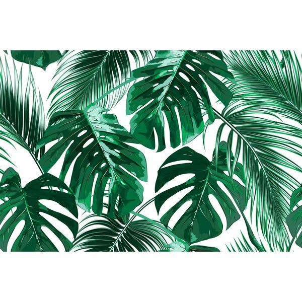 Joana Removable Tropical Palm Leaves 7 92 L X 150 W Peel And Stick Wallpaper Roll In 2021 Computer Wallpaper Desktop Wallpapers Aesthetic Desktop Wallpaper Leaf Wallpaper