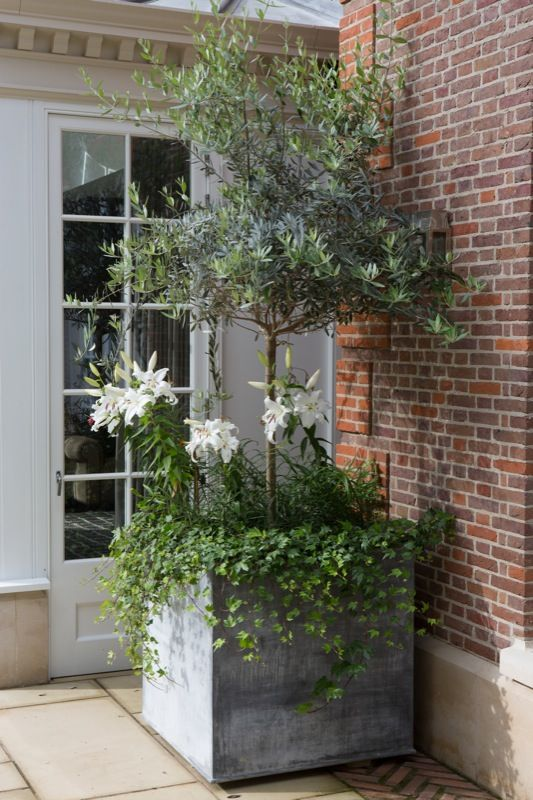a huge metal container with a small tree and flowers ... Zinc Garden Planters on zinc planter boackround on white, zinc furniture, zinc bowls, zinc window boxes, zinc garden statues,