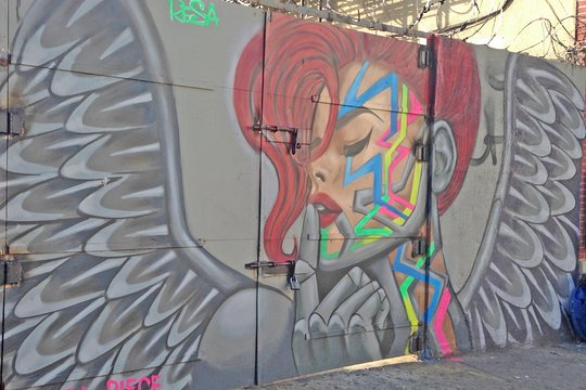 TripAdvisor   Brooklyn Street Art Walking Tour provided by Brooklyn Unplugged Tours & Graffiti Art   New York City