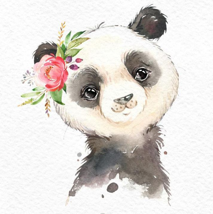 Little Koala Red Panda Panda. Watercolor animals clipart portrait flowers kid cute nursery art nature realistic friends baby-shower