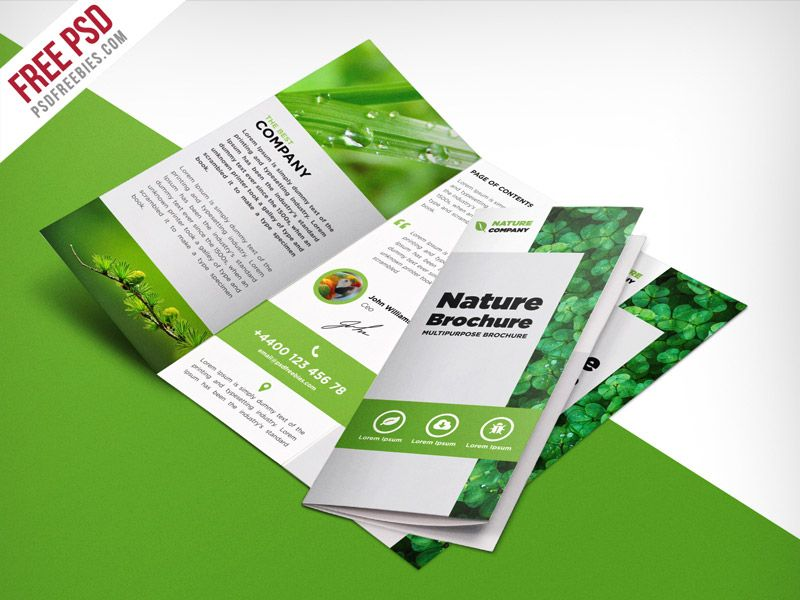 Nature Tri Fold Brochure Template Free Psd Aug Pinterest