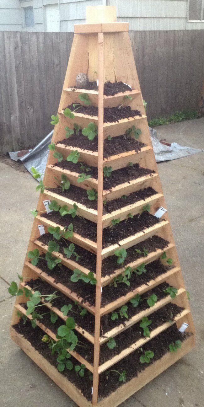 Vertical-Garden-Pyramid-Tower_02.jpg (650×1297)