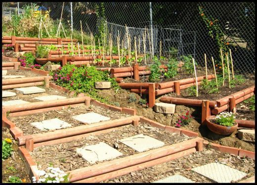 Steps up a slope using timbers terraced hillside for Terrace vegetable garden by harikumar