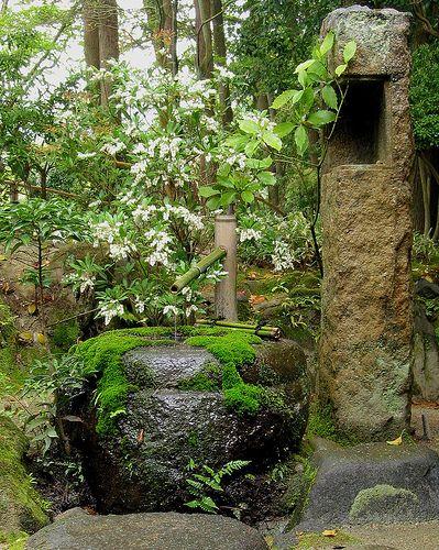 kodachi ken senshi   日本庭園 Японский сад   Asian garden ...
