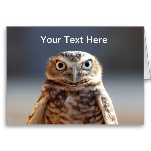 Cute Burrowing Owl Card
