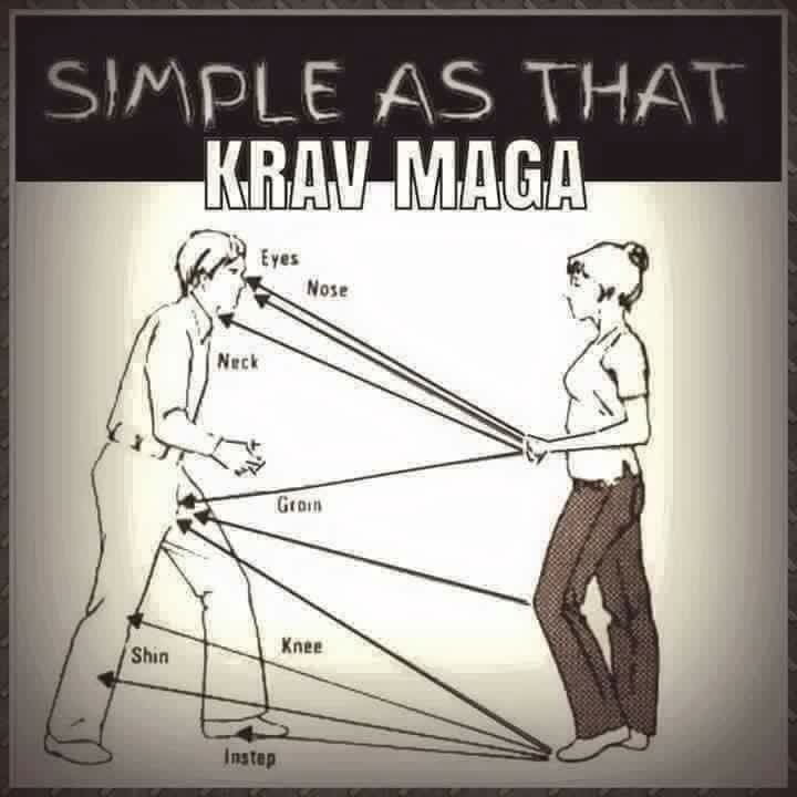 There's nothing simple about Krav Maga - but this is pretty