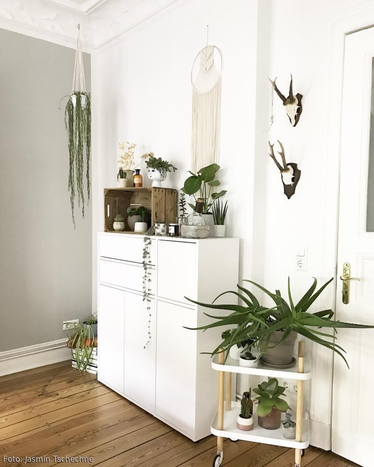 Schlafzimmer Mit Vielen Pflanzen: Garten, Balkon & Pflanzen