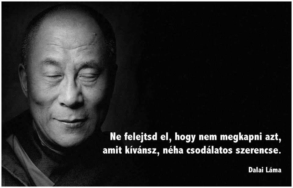 dalai láma idézetek Dalai láma idézet a lemondásról. A kép forrása: Judit Benkõ  dalai láma idézetek
