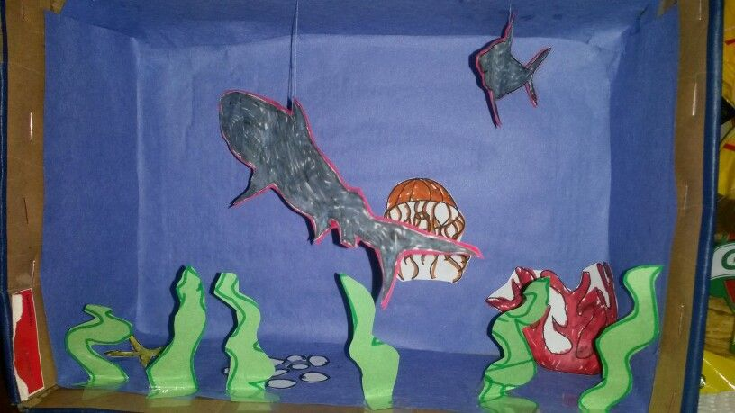 Tiger shark diorama myprojects Pinterest Ocean unit and School - copy coloring page of a tiger shark