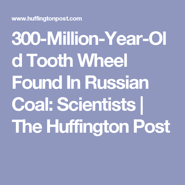 300-Million-Year-Old Tooth Wheel Found In Russian Coal: Scientists   The Huffington Post