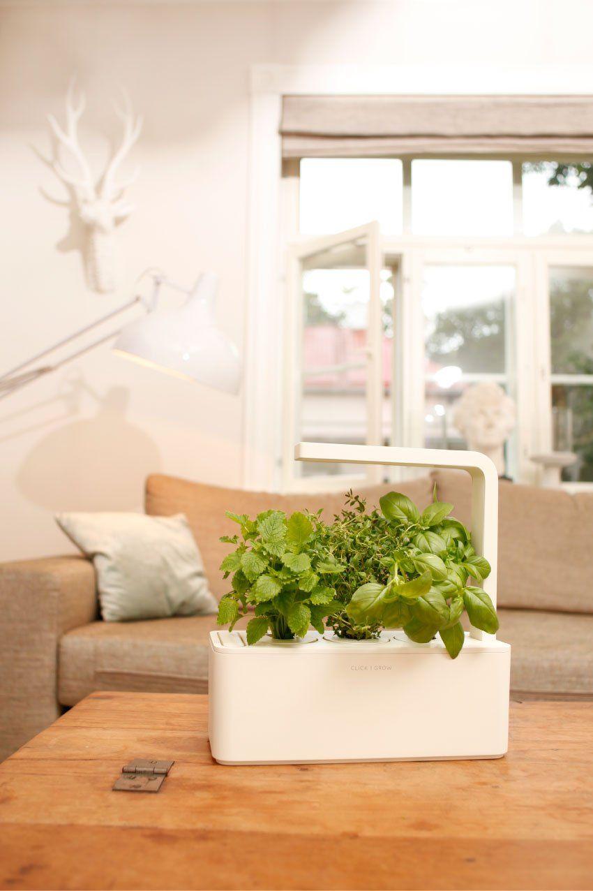 Amazon Com Click Grow Indoor Smart Herb Garden With 3 400 x 300