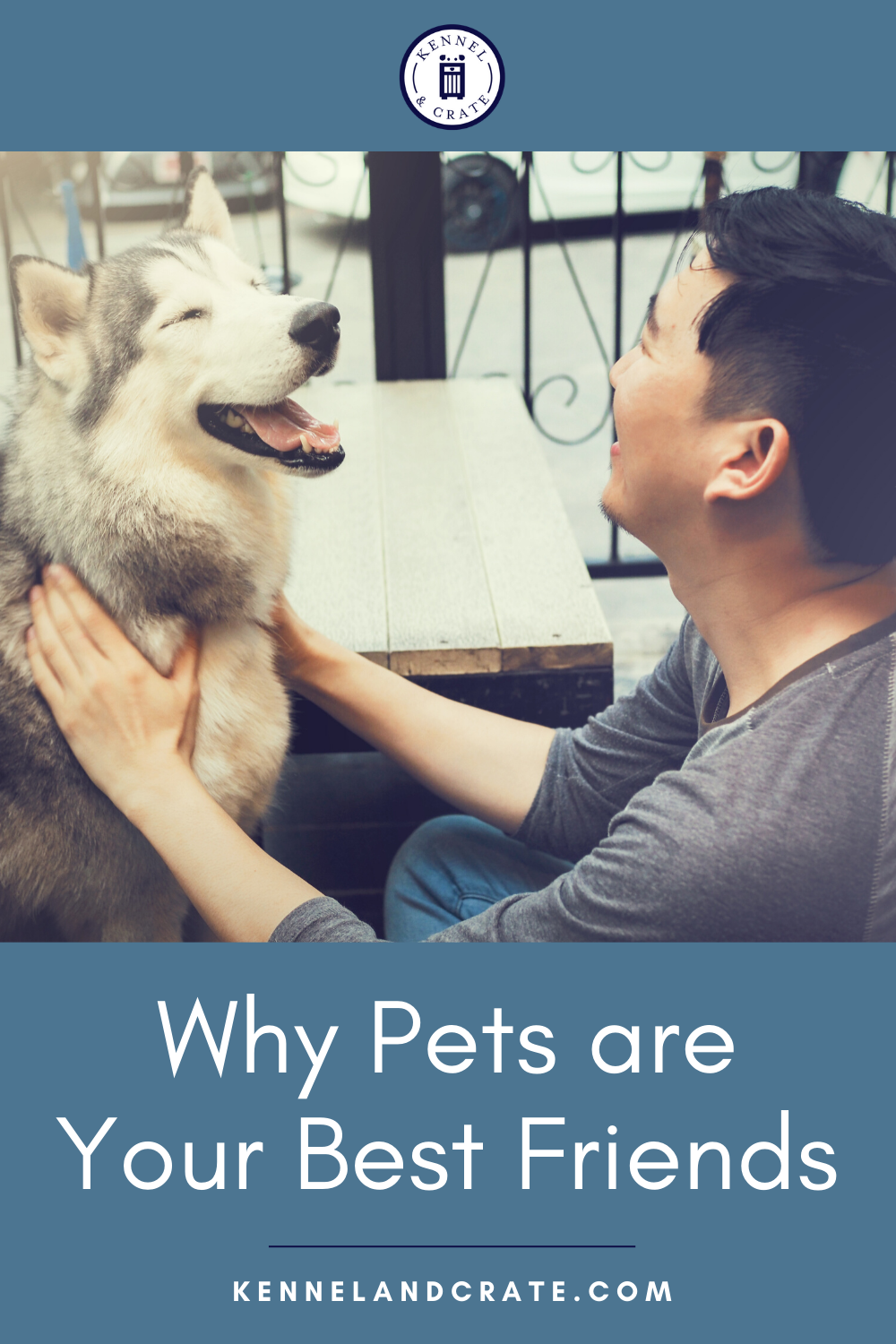Why Your Pet Is Your Best Friend In 2020 Pets Best Friends