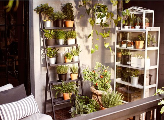Idee: moestuin op het balkon huisje pinterest balconies