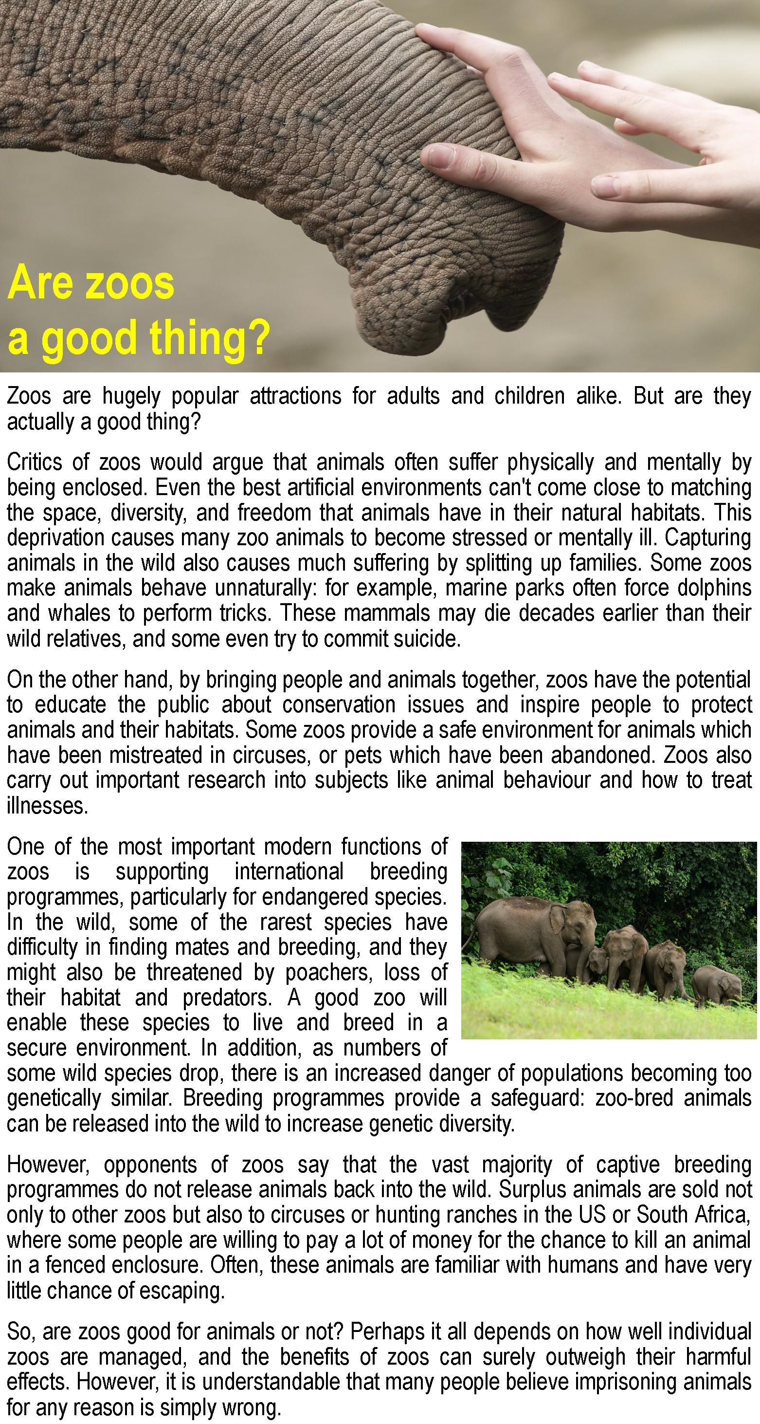 Are Zoos A Good Thing
