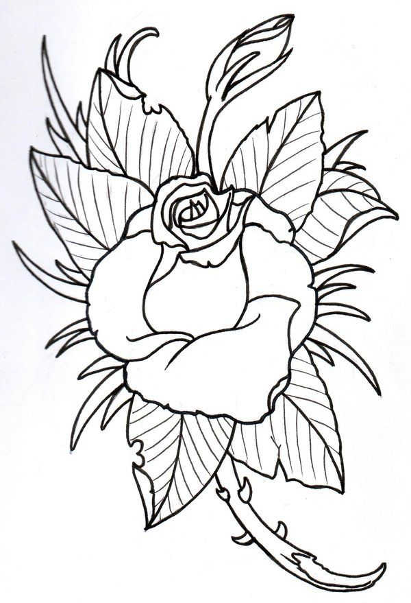 Rose outline by vikingtattoo deviantart fairy tale for Tattoo art coloring pages