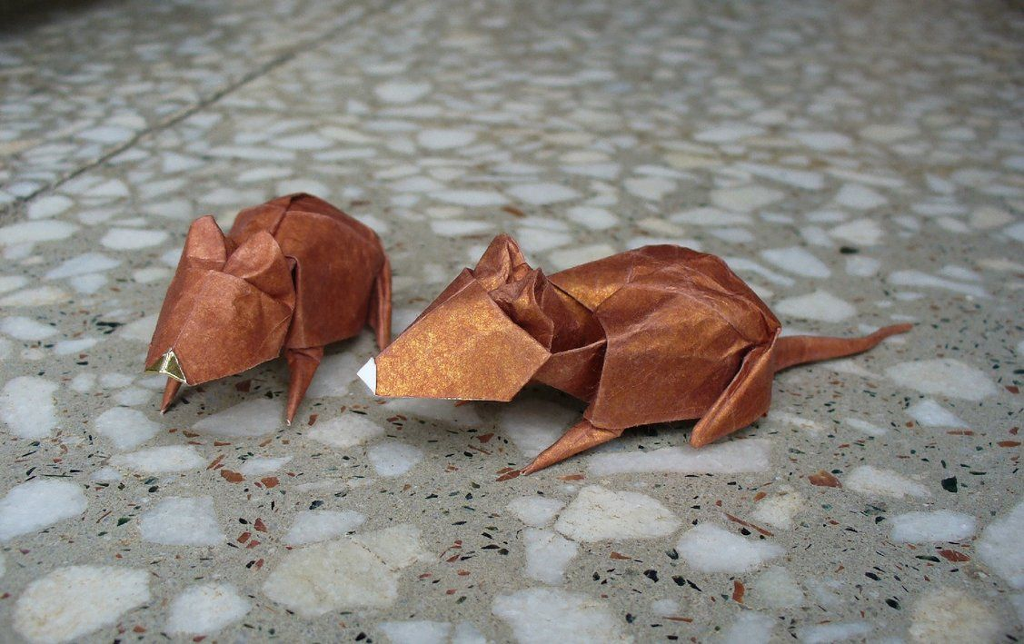Raton or mouse by figuer on deviantart origami pinterest origami rat or mouse by figuer on deviantart jeuxipadfo Images