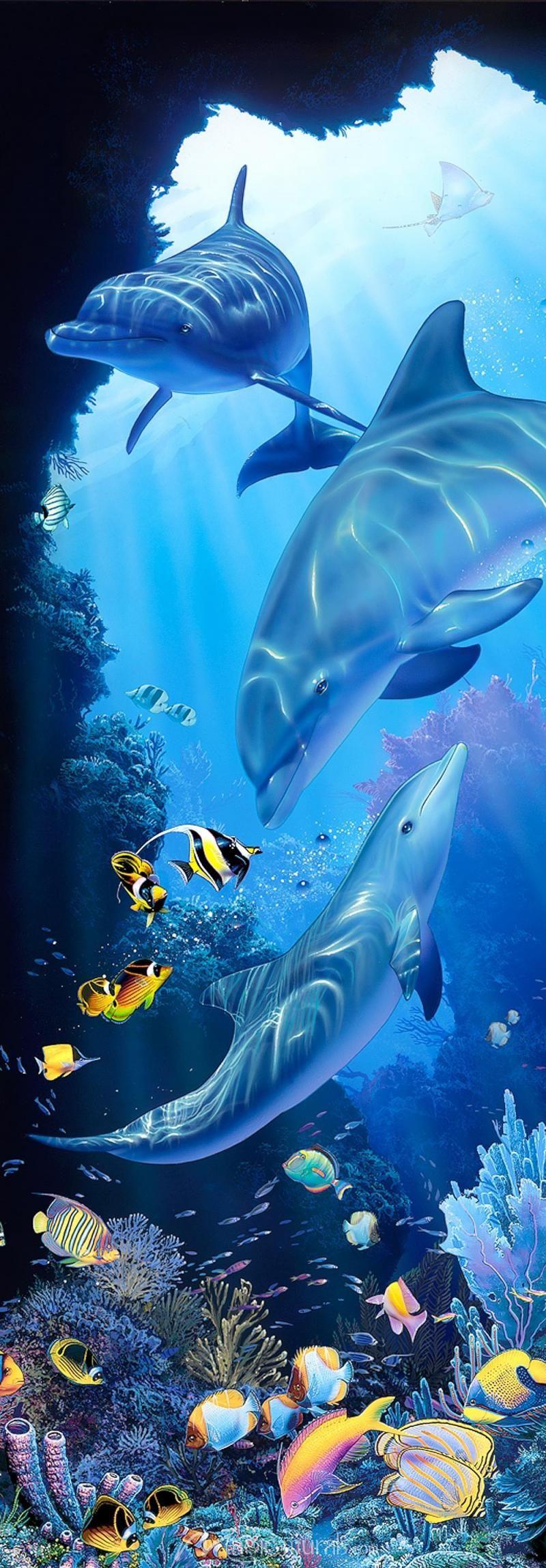 Dolphin Sanctuary Ocean animals, Sea animals