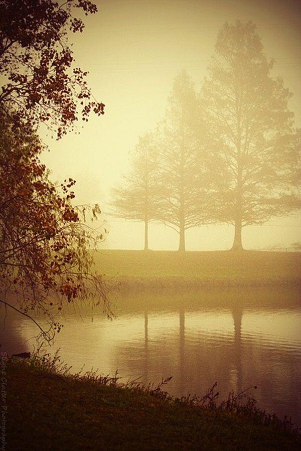 Elegant Sepia Photography Examples 8 Nature Photography Sepia Photography Landscape Photography