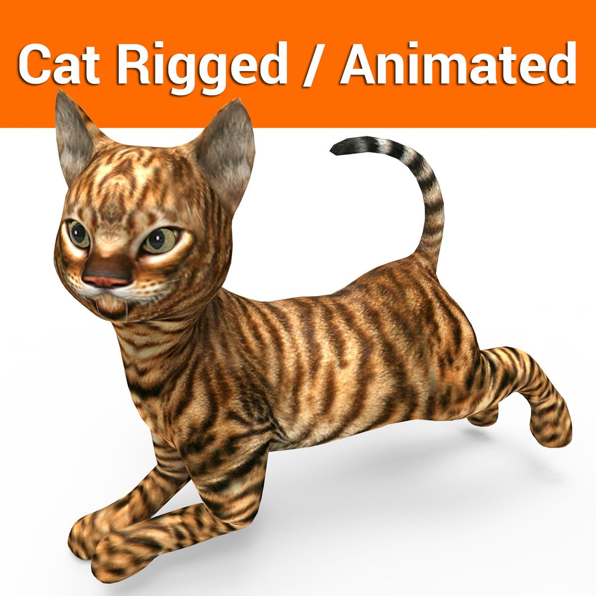 Cat Rigged Animation 3d 3ds 3d Model Cats And Kittens Cat Facts Cat Shots
