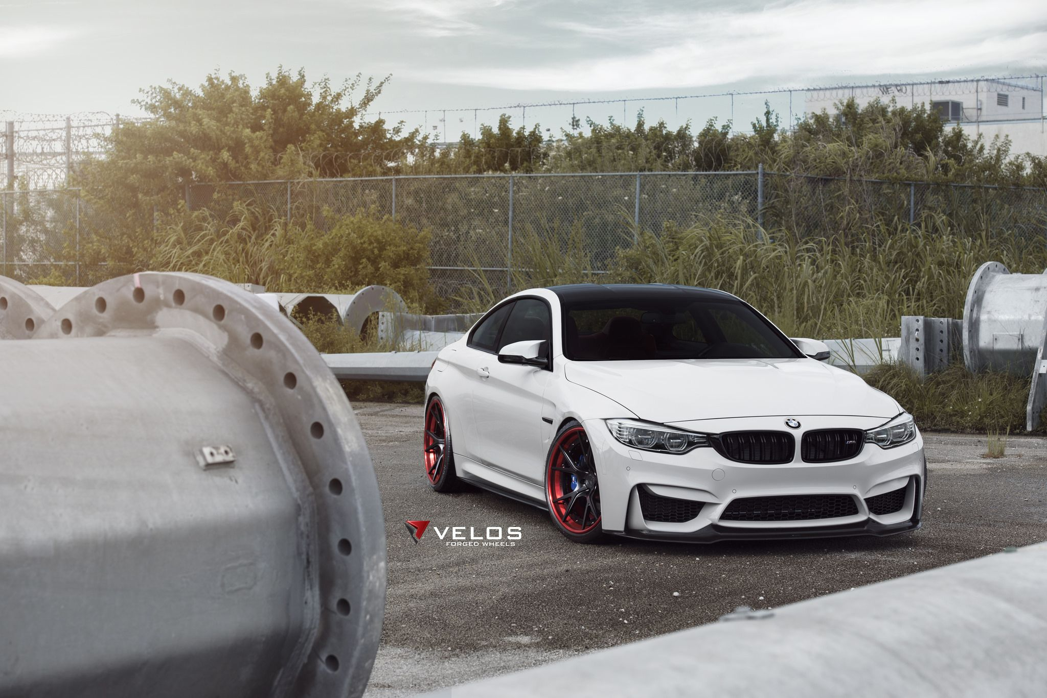 Alpine white bmw f82 m4 looks aggressive with red accented velos wheels http