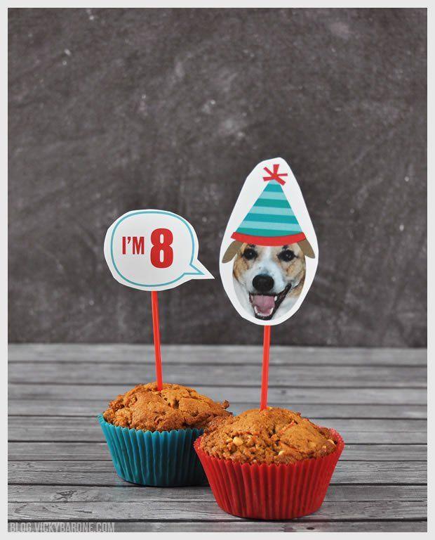 Happy 8th Birthday Cooper Dog Dog Birthday Cupcakes Dog Birthday