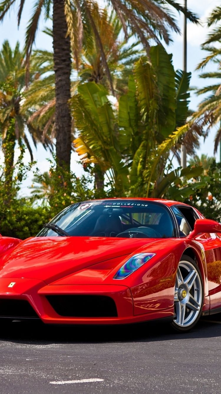 Backgrounds Ferrari Enzo Red Color Hd For Desktop Computer With ...