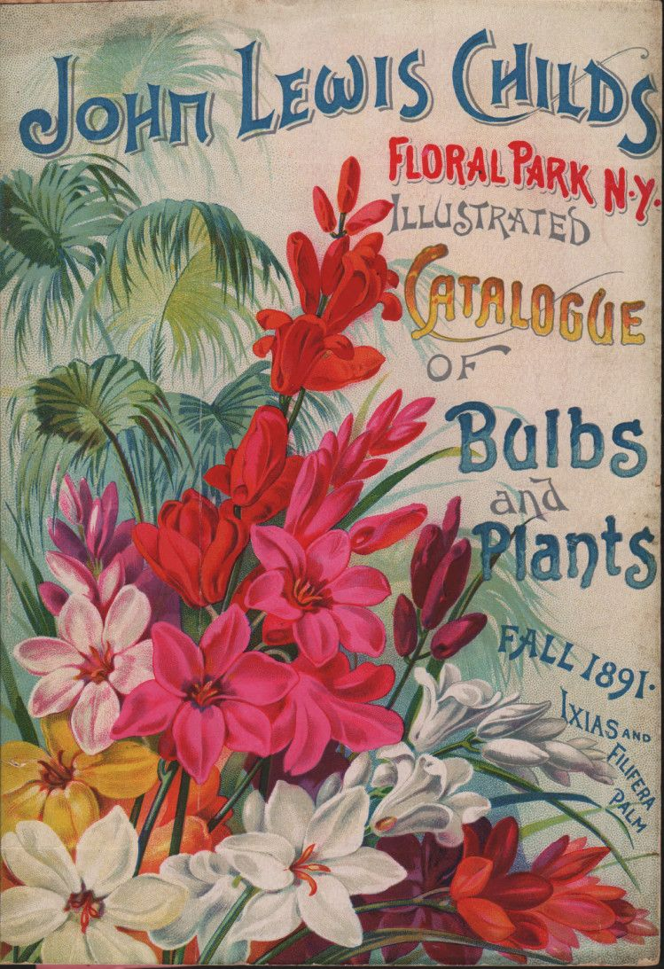 From the Library: Vintage Floral Park, NY    From the 1891 Childs' fall catalogue of bulbs published by John Lewis Childs, Floral Park, N.Y.    Source: The LuEsther T. Mertz Library's Seed and Nursery Catalog Collection.