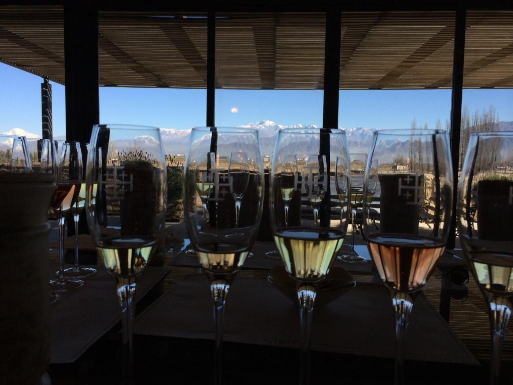 Argentina Wine Tours - Mendoza - Reviews of Argentina Wine Tours - TripAdvisor