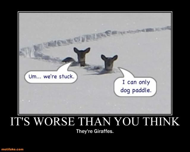 Snow Sayings and Quotes | its-worse-than-you-think-snow ...