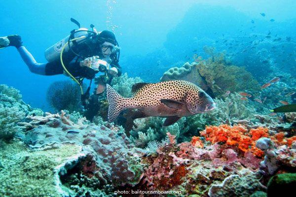 Pin Di Info Tempat Wisata Di Indonesia
