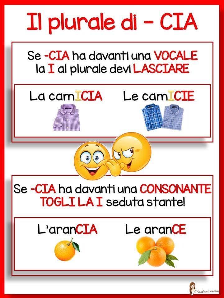 IL PLURALE DI CIA