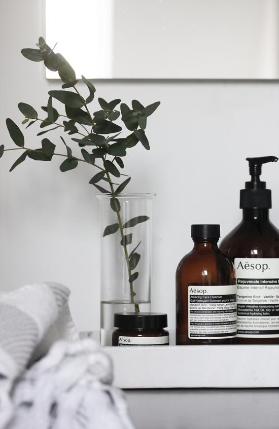 Aesop products | Elisabeth Heier, March 2014 [Original post in Norwegian]