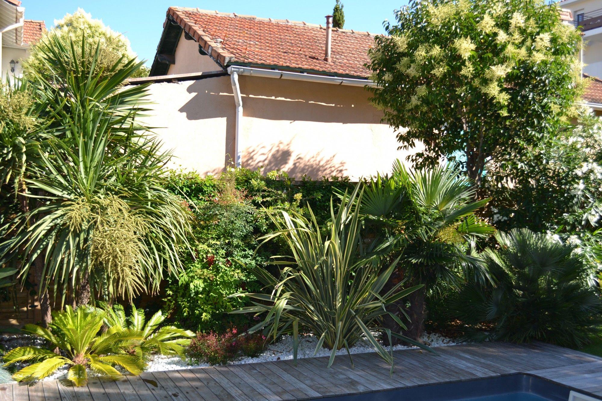 piscine terrasse en bois am nagement paysager avec de palmiers nicolas roubaud 13008 jardin. Black Bedroom Furniture Sets. Home Design Ideas