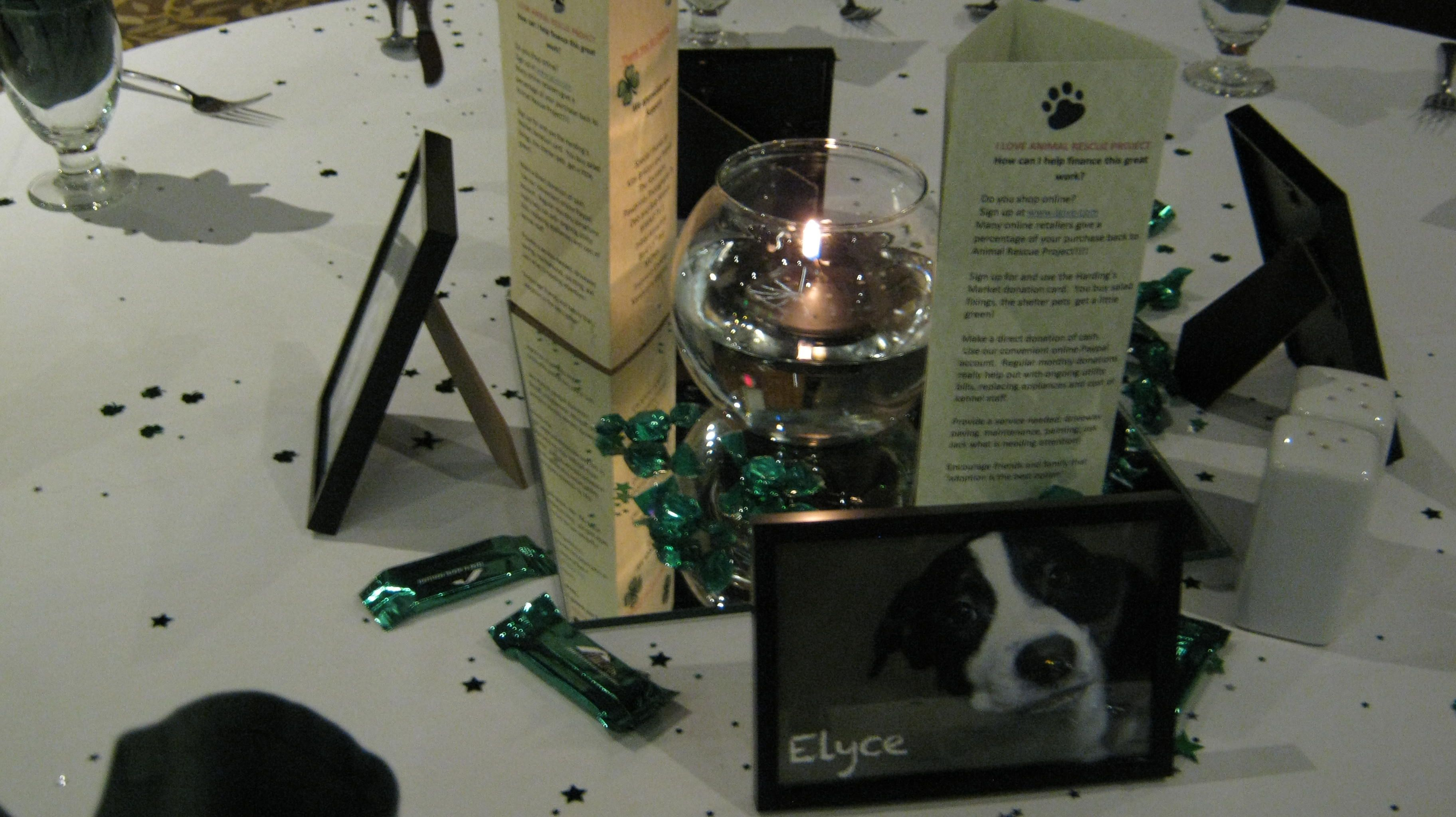 Centerpiece From The Animal Rescue Project Gala Ideas Fundraising Centerpieces