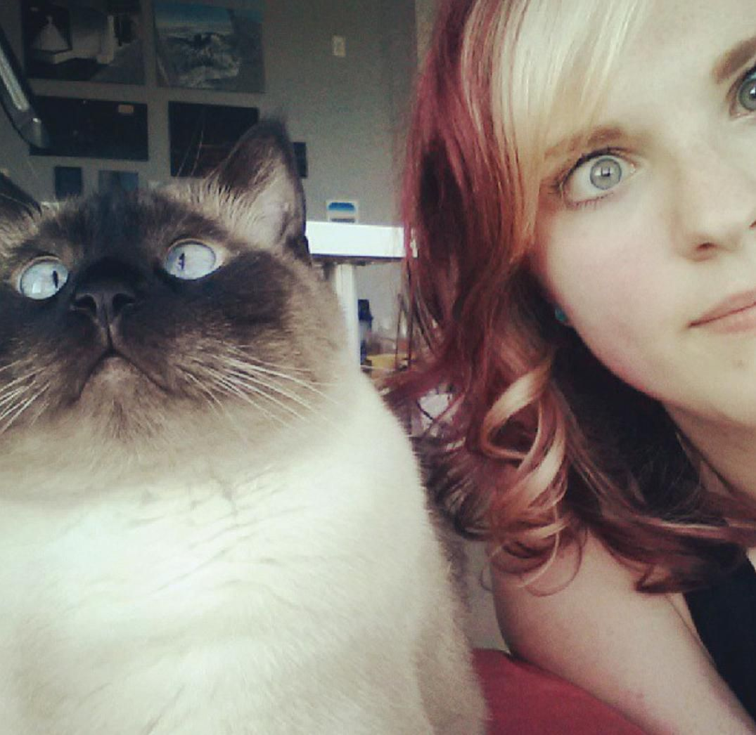 I am looking after my friends cross-eyed siamese Josh. Heres a photo I took of us