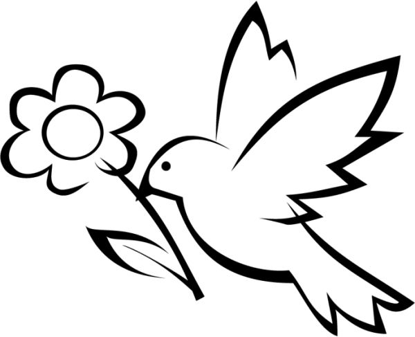 bird drawing simple - Ronni kaptanband co