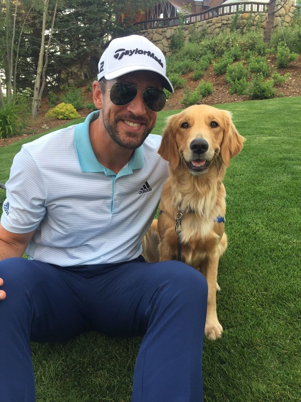 Aaron Rodgers Dog : aaron, rodgers, Aaron, Rogers, Rogers,, Packers,, Green, Packers