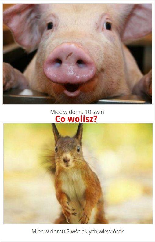 Co wolisz? http://www.ubieranki.eu/quizy/co-wolisz/325/co-wolisz_.html