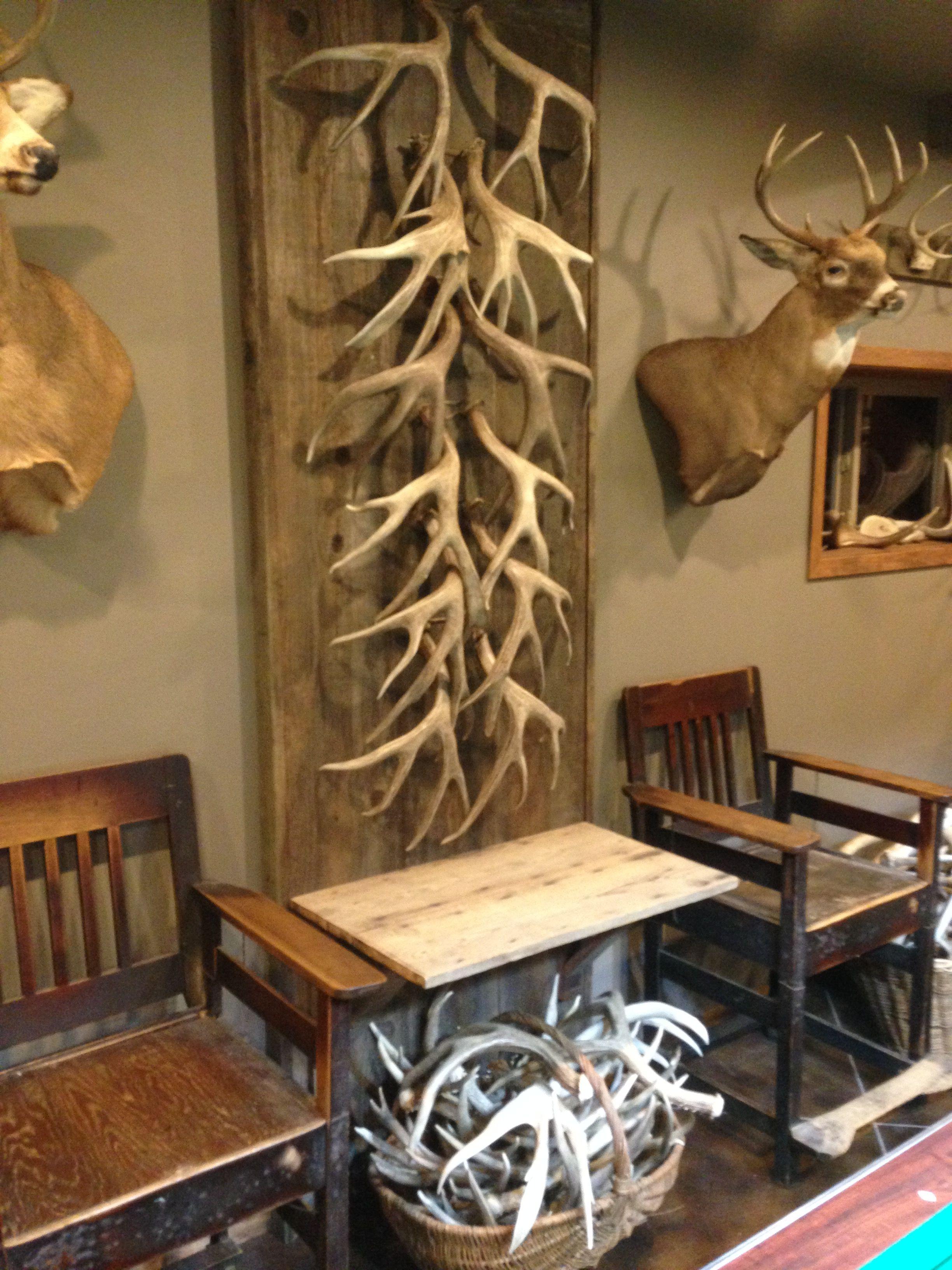 Barnboard Shed Antler Mule Deer Wall Deer Antler Decor