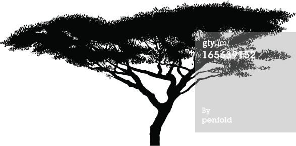 Acacia Tree Motif On Wall Google Search Paysage Africain Silhouette Arbre Girafe Dessin