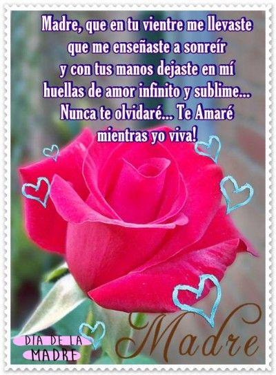 Las Huellas De Mi Madre Con Una Rosa Roja Mother S Day 1 Feliz Dia