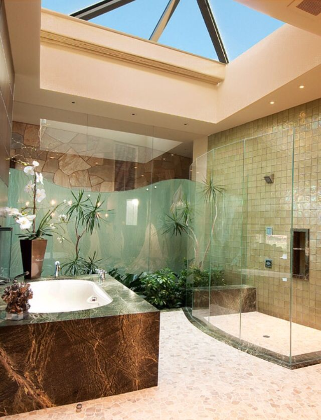 Atrium Bathroom A Good Reason For Moving The Toilet Out It Allows The Bathroom To Be On Public Display Bathroom Design Luxury Dream Bathrooms Luxury Homes